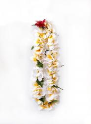 Poepoe Plumeria Jasmine Silk Lei